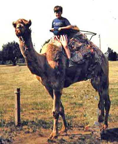 Craig Zurcher on Camel